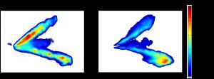 Figure: PLIEF measurement of liquid and vapor GDI spray.